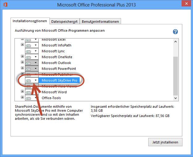 Microsoft Sky Drive Pro in den Installationsoptionen